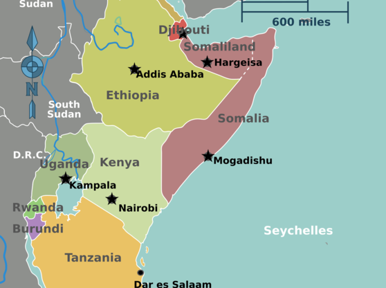 The United States' New Policy Towards East Africa: How